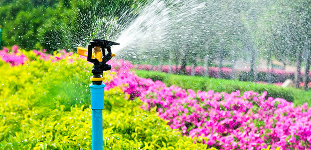 Garden Irrigation - Water Properly